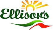 Ellisons Coach Hire - Swindon
